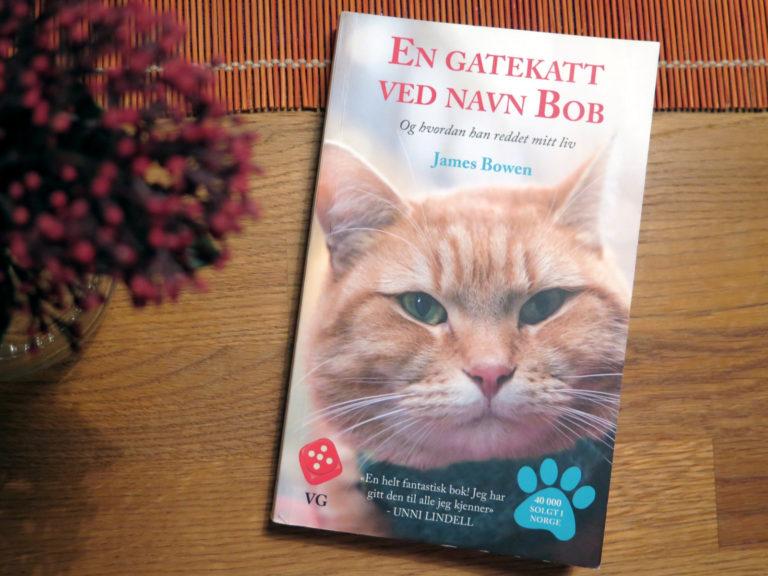 en-gatekatt-ved-navn-bob